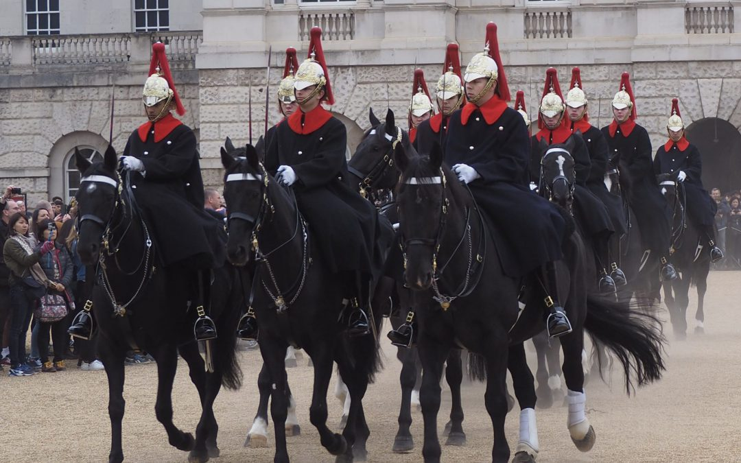 All the King's Horses…….